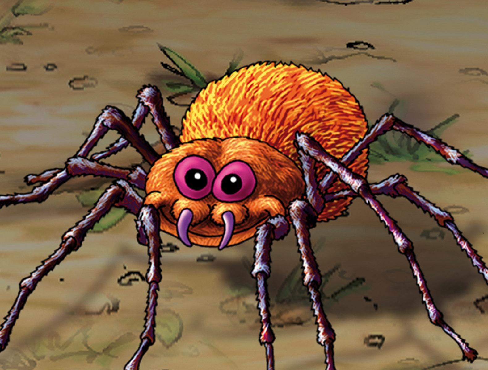 farlige edderkopper